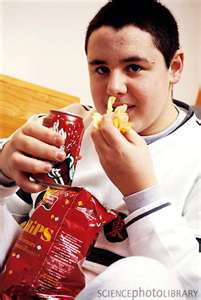 junk food eater2