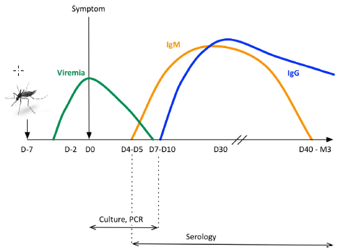 CHIKV and DENV Immunological Levels Plots