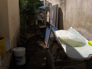 Mosquito breeding sites1