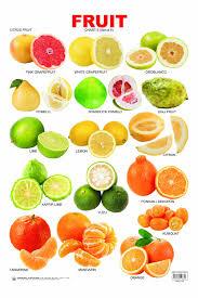 Citris fruit chart